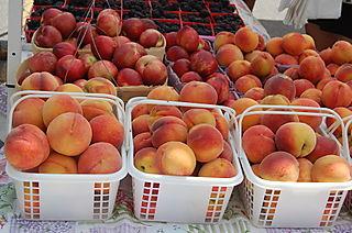 B Peaches