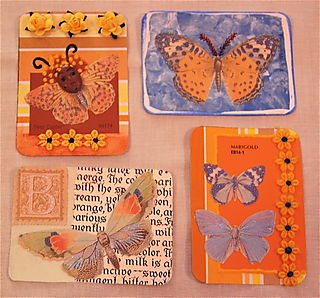 Butterfly ATCs 4