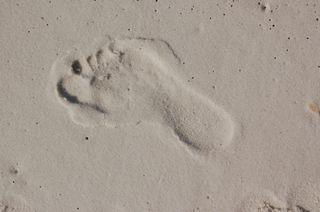 Beach Patterns 11