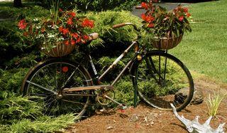 Bike planter 2