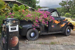 Pickup truck planter