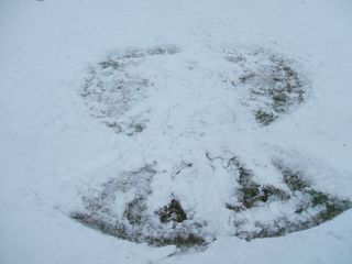 Andy's Snow Angel