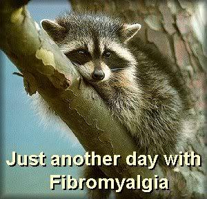 Fibroday15