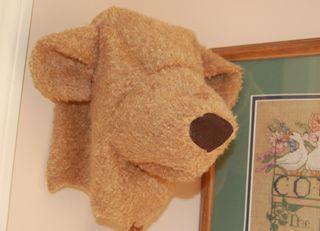 Floppy bear head