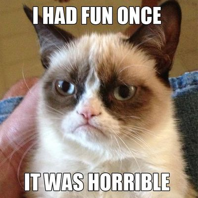 Grumpy-cat-i-had-fun