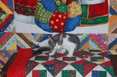 Bella & Quilts 2
