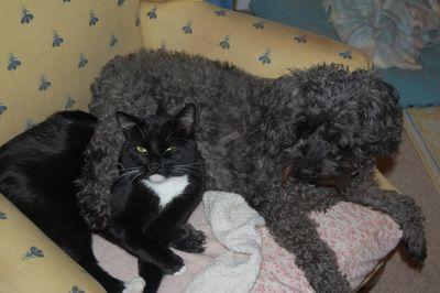 Sophie&Taci