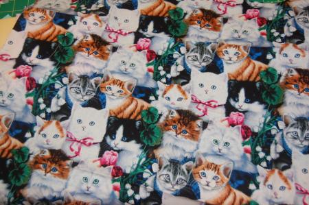 CatsWalmamrt