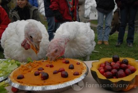 Sammi-and-Aya-eating-pie-CREDIT_Jo-Anne_McArthur