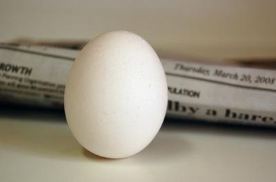 Egg_5